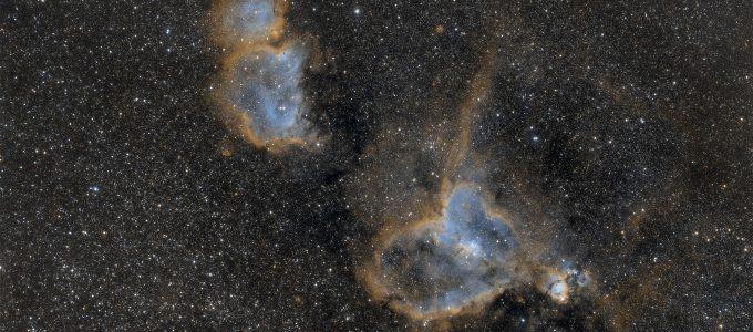 IC1805; IC1848